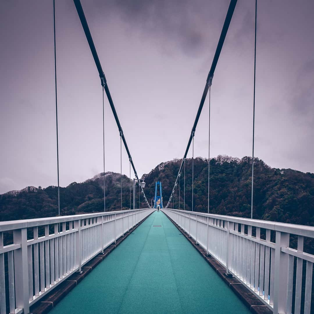 series outside landscape cityscape photo by taspho photography-bridge in japan